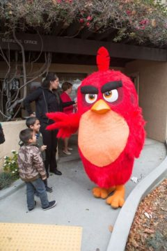Angry Bird at at Garden Grove Strawberry Festival
